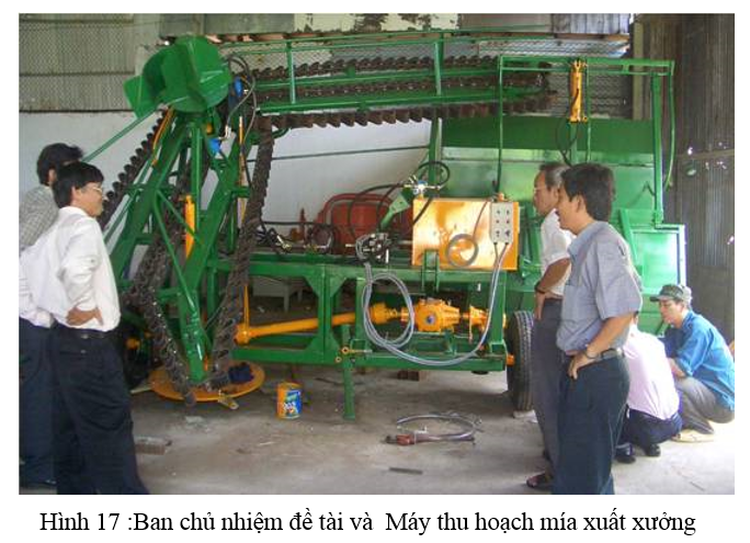 Green sugar cane Harvester