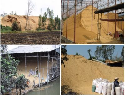 Potential of rice husk in MeKong Delta.